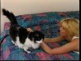 Jenna Jamesons joue avec sa chatte